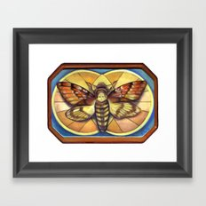 Deaths Head Moth Framed Art Print