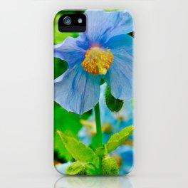 Himalayan Poppy iPhone Case