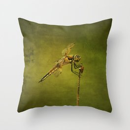 4-Spotted Skimmer Dragonfly Throw Pillow