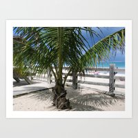 Culebra Island , Peurto Rico Art Print