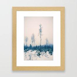 Birches in white Framed Art Print