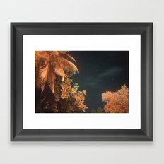 Seychellian palmtrees and the Milky Way Framed Art Print