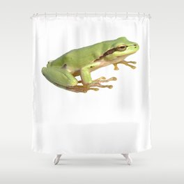 European Tree Frog Isolated Shower Curtain