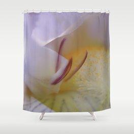 Gladiolus - Iris - JUSTART © Shower Curtain