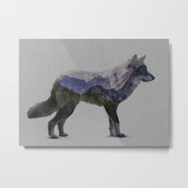 The Rocky Mountain Gray Wolf Metal Print