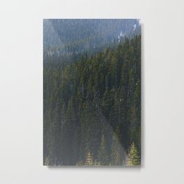 Canmore Trees Metal Print