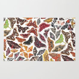 Saturniid Moths of North America Pattern Rug