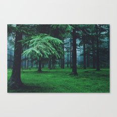 home of the wolves Canvas Print