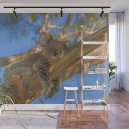 Sleepy Koala (digital painting) Wall Mural