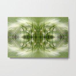Hordeum Jubatum Abstract Metal Print