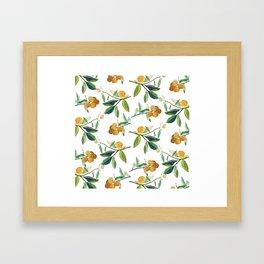 Clementines Framed Art Print