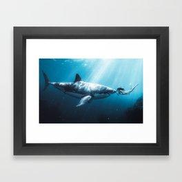 Shark Kiss (Wide) Framed Art Print