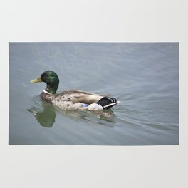 Swimming Mallard Duck Rug