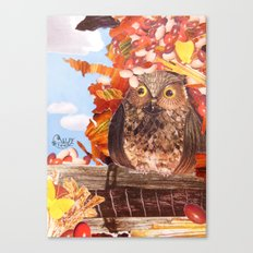 Hoot! Canvas Print