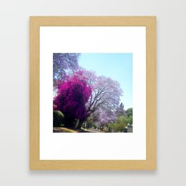 #265 #Gauteng #Summer #Colour #Palette Framed Art Print