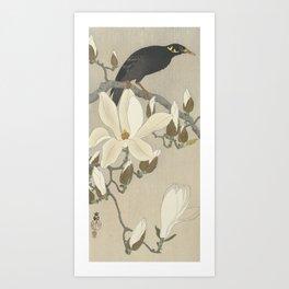 Myna on Magnolia Branch, Ohara Koson, 1900 Art Print