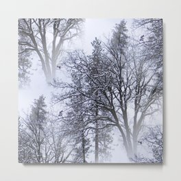 Snowy day in the trees..... Metal Print