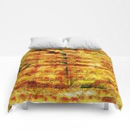 Essay Comforters