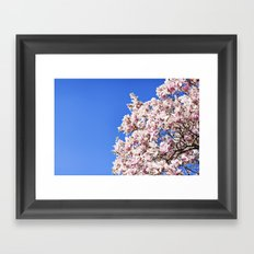 dogwood tree Framed Art Print