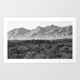 Wild West III - Tucson - Black & White version Art Print