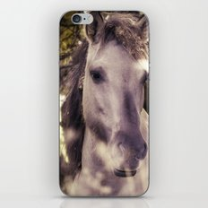 Unshakable Peace iPhone & iPod Skin