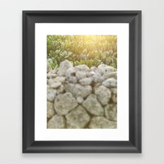 Sunset over a Mediterranean field and a dry stone wall Photo for Interior Design, south Italy, Framed Art Print