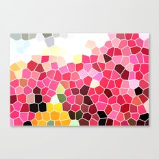 Pattern 5 - pink explosion Canvas Print