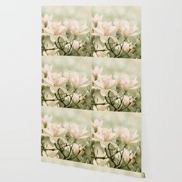 Magnolia 011 Wallpaper