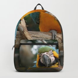Blue And Gold Macaw Backpack