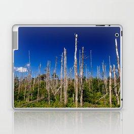 Cape Breton Seaside Treescape Laptop & iPad Skin