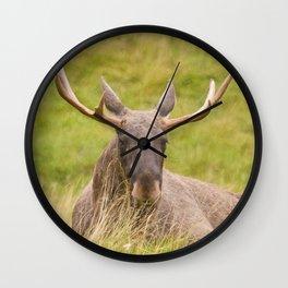 Mr Moose Wall Clock