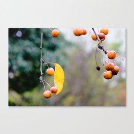 Fall is over wabi-sabi Canvas Print