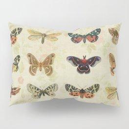 Moths & Butterflies Pillow Sham