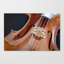 Cello Admiration Canvas Print
