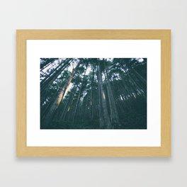 Evergreen State Framed Art Print