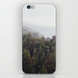 forest for all the trees iPhone Skin