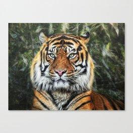panthera tigris II Canvas Print