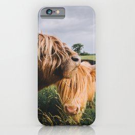 Highland Cows II iPhone Case