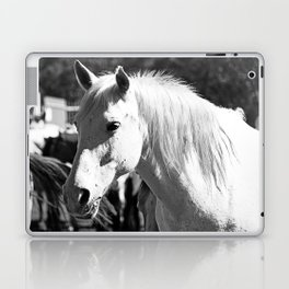 White Horse-B&W Laptop & iPad Skin