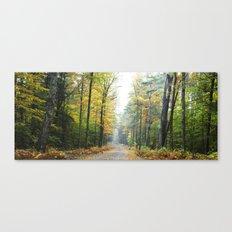Autumn's Secrets  Canvas Print