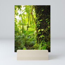 Trunk of the Jungle Mini Art Print