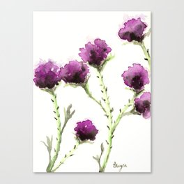 Milk Thistle Canvas Print