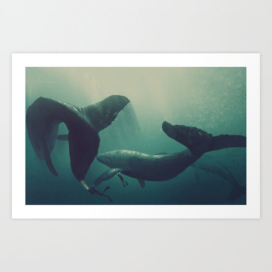 Swimming with whales Art Print