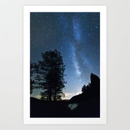 Night at the forest Art Print
