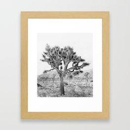 Joshua Tree Giant by CREYES Framed Art Print