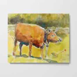 Cow, Bull you tell me? Metal Print