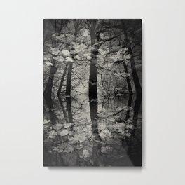 See the beauty series - II. -  Metal Print