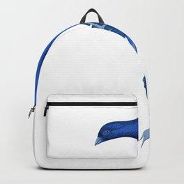 Bird in blue Backpack
