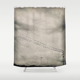 Birds in the Rain Shower Curtain