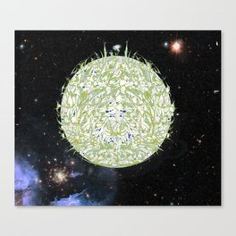 Earth - a story in space and time Canvas Print
